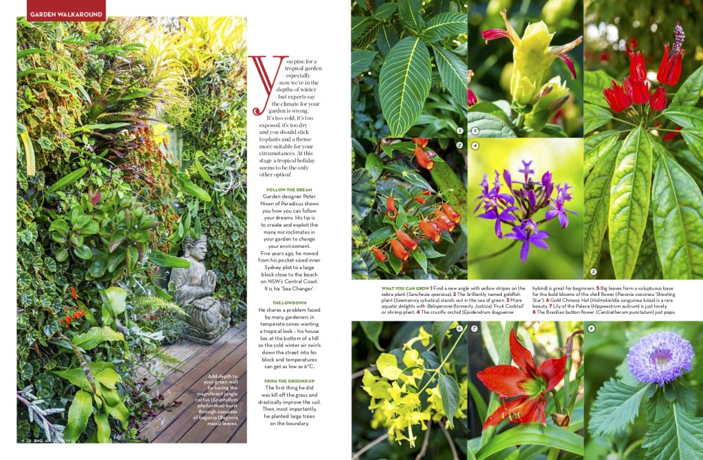 78085053 Garden Lovers, if you haven't been able to make it up for one of  'Sea-Changer's' opens here at Forresters Beach on the Central Coast, grab  yourself a copy ...