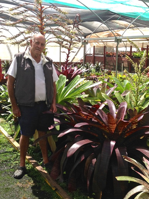 "Bob Lanarch and hero plants Vriesea hybrids featuring ruby ""snake skin"" patterning"